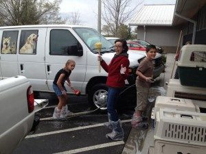 Suzanne volunteering with Sun Soo Teens at the Asheville Humane Society
