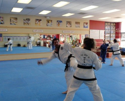 sparring photo tae kwon do north carolina