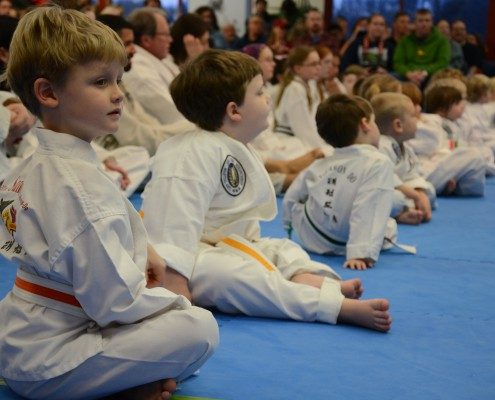 children learning martial arts