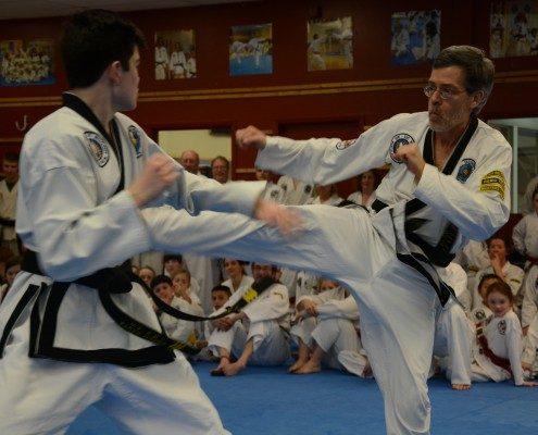 high kick male martial arts program