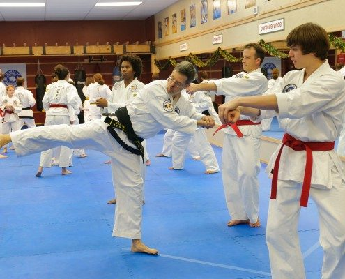 form instruction martial arts group