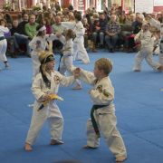 free event kids activity asheville