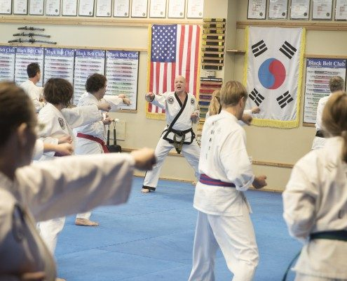 asheville martial arts lessons
