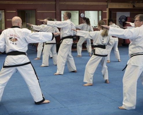 Form example tae kwon do instructor