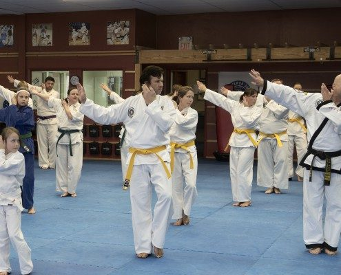 tae kwon do traditional session adult children