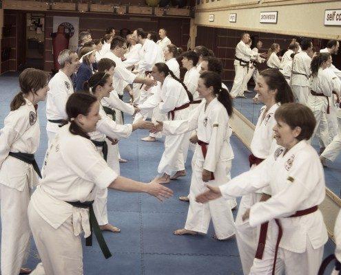 joyous handshakes bows martial arts