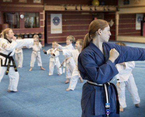 family tae kwon do classes children