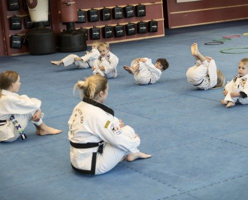 toddlers asheville martial arts classes
