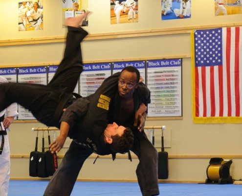 flipping martial arts example