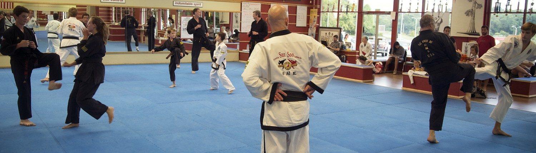 sparring black belts
