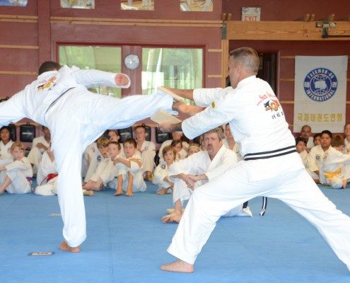 board breaking demonstraction kicking