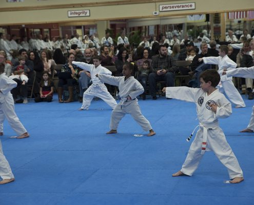 martial arts classes for kids