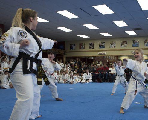 taekwondo classes for toddlers