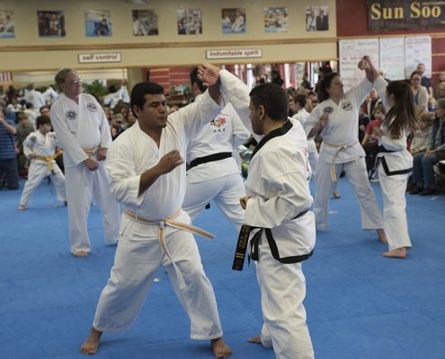 TKD martial arts classes