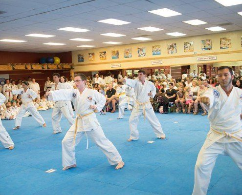 beginner adults martial courses