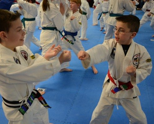 boys sparring in class 28803
