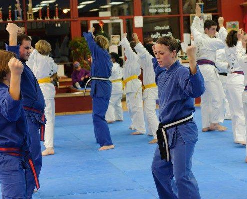 fists up stance teens taekwondo