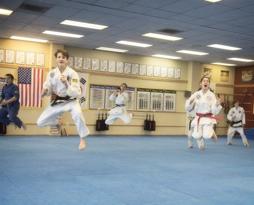 vocal yells traditional taekwondo plyometrics