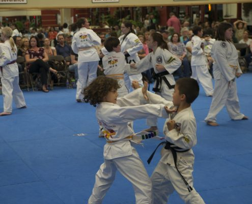 Two boys practice martial arts in asheville