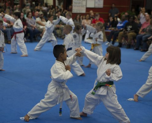 elementary school tae kwon do students practice martial arts in asheville