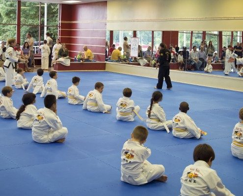 beginning course martial arts kids