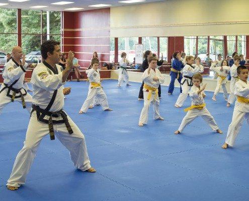 kids learning karate