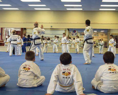 demo korean karate