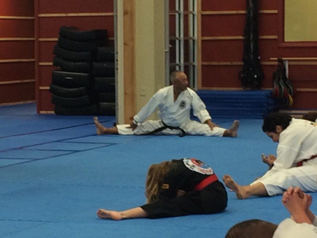 Taekwondo Bootcamp 2017