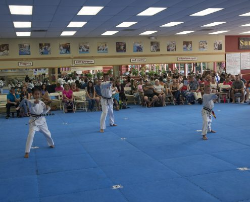 Tae Kwon Do Classes