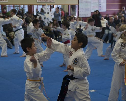 taekwondo for kids at asheville sun soo