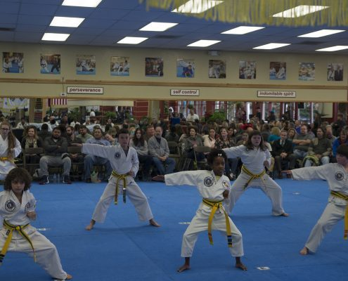 karate for kids in asheville