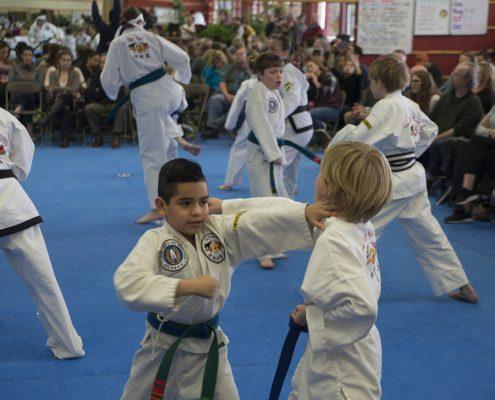 kid self defense class in asheville