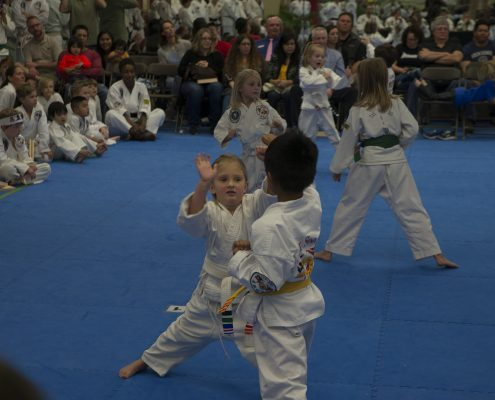 martial arts for kids in kindergarten