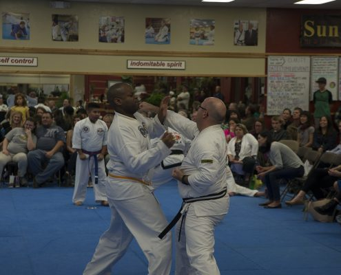 self defense for adult at asheville sun soo