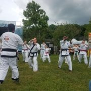 Asheville Sun Soo Martial Arts Demo at the Mountain Sports Festival