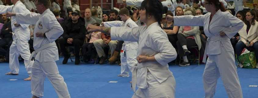 photo of adults practicing martial arts