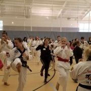 Asheville Sun Soo Participates in National Girls and Women Day events