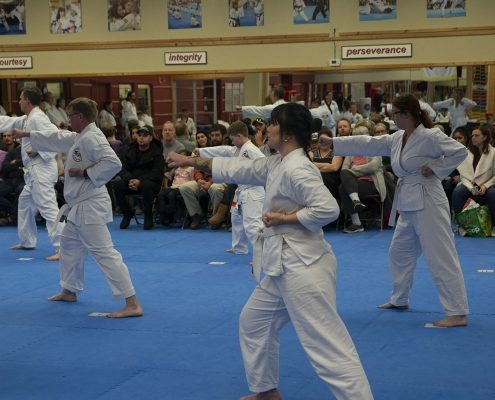 photo of adults participating in belt rank testing
