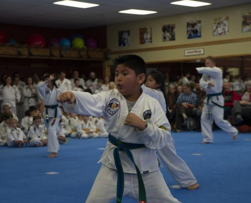 photo of child doing martial arts