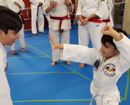 Two young boys practice martial arts