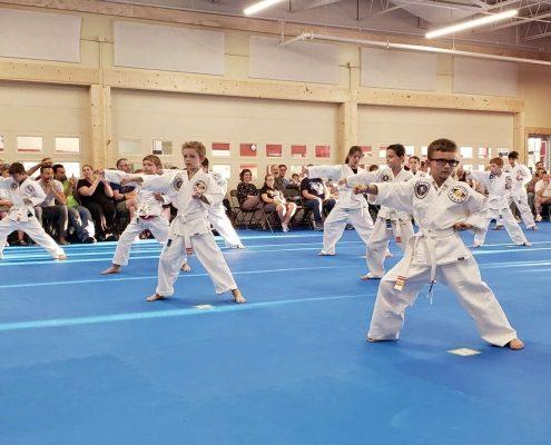 A group of children doing taekwondo
